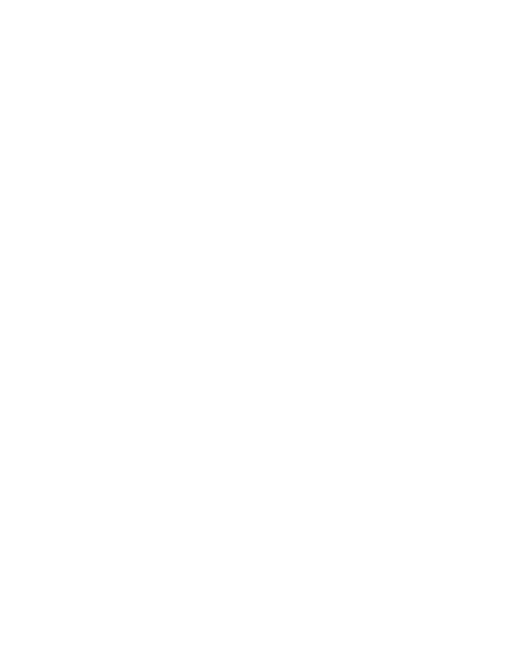 Studio de Gruyter